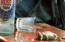 Ученые нашли способ сократить потребление алкоголя