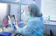 Новый подход к разработке вакцины против гриппа