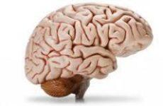 Провалы в памяти: как наладить мозговую деятельность без лекарств