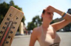 Академик РАН усомнился, что жаркая погода поможет в борьбе с коронавирусом