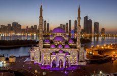 ОАЭ помогут Чечне и Дагестану в борьбе с коронавирусом