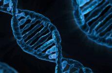 Ученые выделили более 500 генов, потенциально способных вызвать рак
