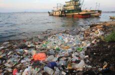 Пластик в океане помогает распространять смертельные болезни