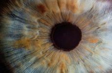 Ученые смогли побороть слепоту с помощью генной терапии