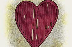Мужские и женские сердца отличаются по строению