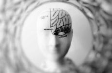 Учёные выяснили, что фруктоза приводит к болезни Альцгеймера