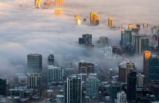 В плаценте обнаружены частицы грязного воздуха