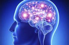 Ученые определили возраст, когда возможности мозга достигают пика