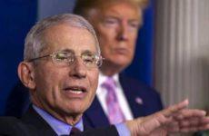 Дональд Трамп назвал главного эпидемиолога «идиотом»