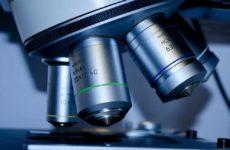 Экспериментальный тест помогает определить БАС и лобно-височную деменцию на ранних стадиях