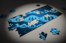 Новое исследование связало 28 генов с редкими расстройствами развития