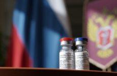 Российский эксперт назвал требующие уточнения вопросы безопасности вакцины «Спутник V»