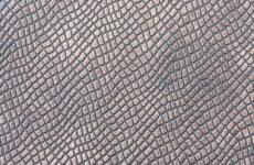 Ученые разработали улучшенный аналог человеческой кожи