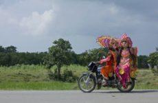 Коронавирус мог появиться на полуострове Индостан