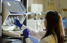 За счет определенных лекарств гены можно изменять