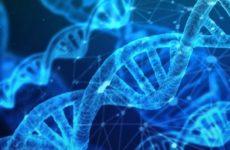 Генное редактирование может вылечить серповидно-клеточную анемию