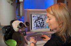 Вирус-мутант может вызвать большую смертность в Англии