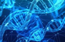 Ученые предложили новый способ включения и выключения ДНК