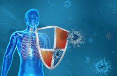 Снова восемь человек погибло от коронавируса в Новосибирске