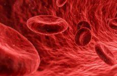 Уровень IgG в плазме влияет на риск смерти от COVID-19