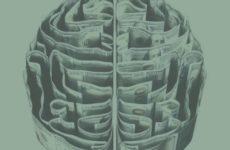 Дефицит кислорода заставляет нервные клетки расти