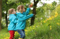 Популярность ЭКО привела к всплеску рождений близнецов
