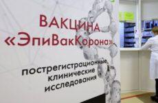 Власти рассчитывают вакцинировать большинство россиян к осени