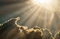 Солнечный свет поможет пережить коронавирус