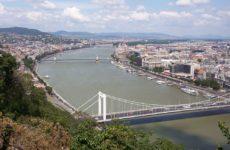 В реке Дунай обнаружили новый коронавирус