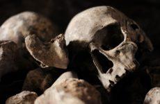 Эволюция помогла людям не вымереть от чумы