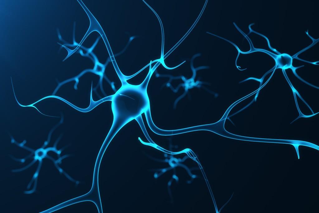 Старые нейроны, контролирующие привычки, также могут помочь мозгу научиться новым трюкам, Здоровье и современная медицина
