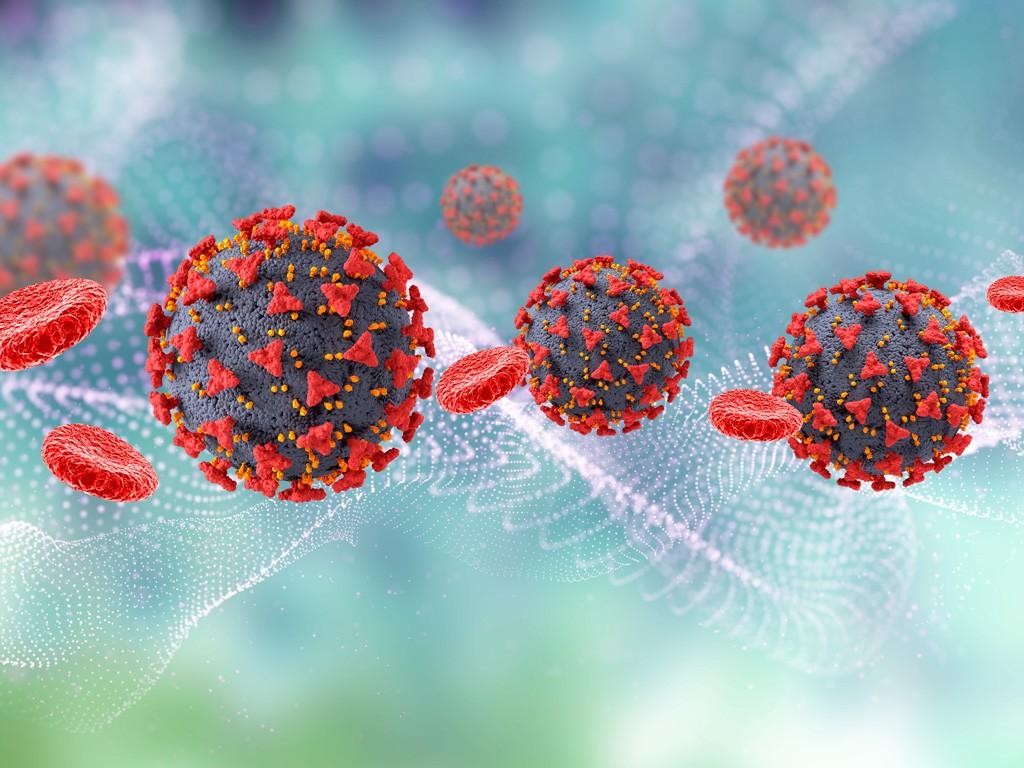 Ученые Южной Африки отслеживают новый вариант коронавируса, Здоровье и современная медицина