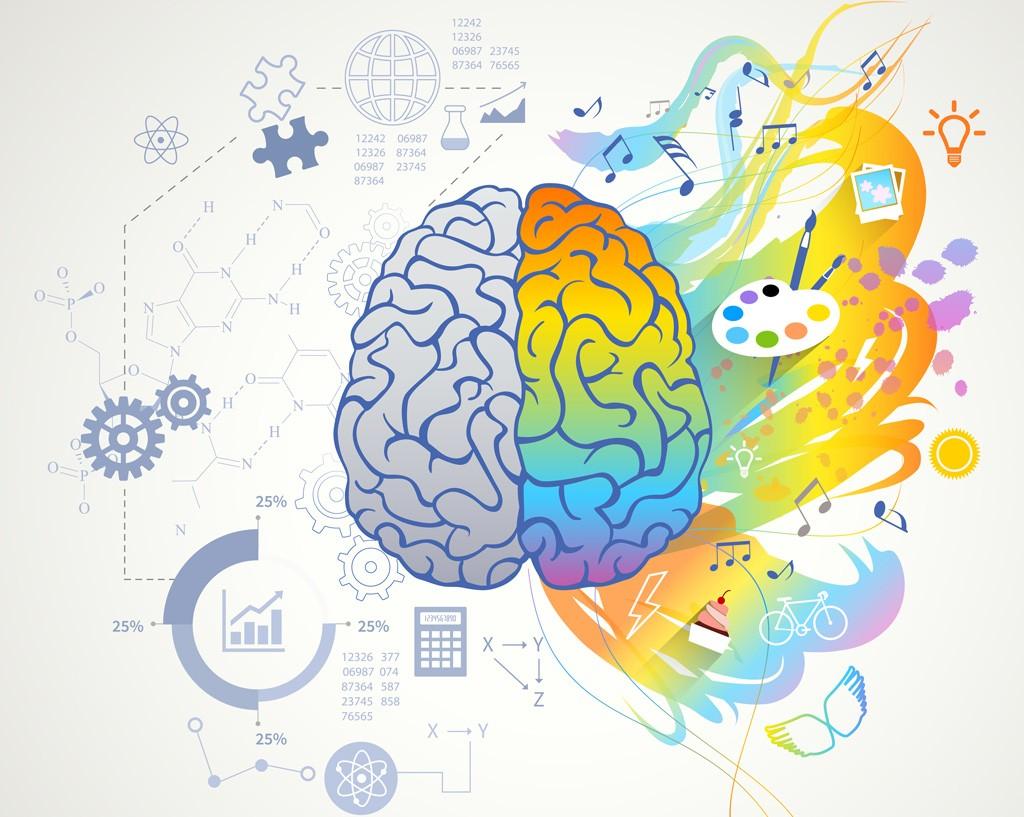 Тахикардия может влиять на процессы принятия решений в мозге, Здоровье и современная медицина