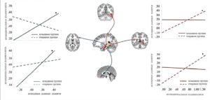 Как функции мозга в детстве и навыки памяти влияют друг на друга, Здоровье и современная медицина